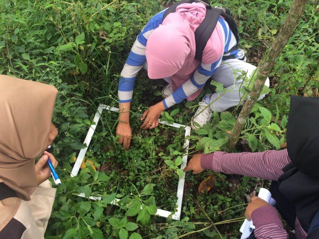 Pengalaman Kuliah Di Sosial Ekonomi Pertanian Unbraw Nikmah